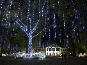 Harding Christmas Lights